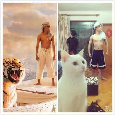 Funny Life of Pi Cover